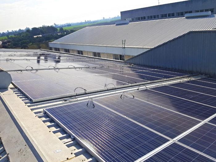 Lama-solar-panel